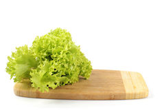 Lettuce in kitchen Stock Images