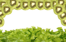 Lettuce and kiwi fruit Stock Photography