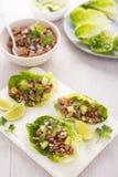 Lettuce larb wraps Royalty Free Stock Image