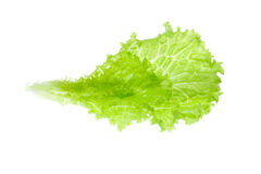 Lettuce leaf. On a white background Stock Photo