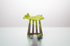 Lettuce leaf on a fork on a white table Stock Images