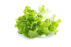 Lettuce leafs Royalty Free Stock Photos