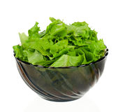 Lettuce leaves Royalty Free Stock Photography