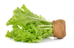 Lettuce leaves in the basket  on white background Stock Images