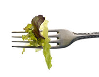 Lettuce leaves on fork Stock Photography