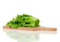 Lettuce leaves Royalty Free Stock Photo