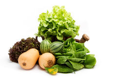 Lettuce leaves. Fruit and vegetable Royalty Free Stock Photos