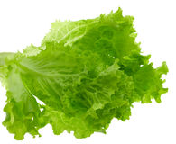 Lettuce leaves, isolated Royalty Free Stock Images
