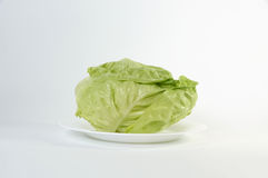 Lettuce leaves  on white background Royalty Free Stock Photos