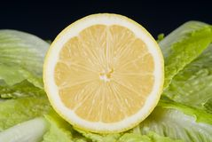 Lettuce and lemon. A sliced lemon surrounded by romain lettuce royalty free stock images