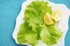 Lettuce with lemon Royalty Free Stock Photos