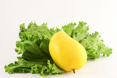 Lettuce and mangoe Royalty Free Stock Photo