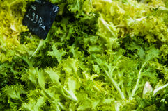 Lettuce in a market Stock Images