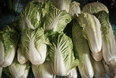 Lettuce in market Stock Photos
