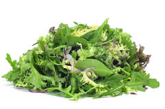 Lettuce mix. Closeup of a pile of lettuce mix on a white background royalty free stock photos