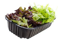 Lettuce mix. In plastic container , isolated on white Royalty Free Stock Images