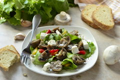 Lettuce with mushrooms, sweet peppers and feta Royalty Free Stock Image