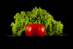 Lettuce and one tomato Royalty Free Stock Photography