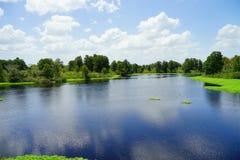 Lettuce park in Tampa. Lettuce park lake in Tampa, Florida royalty free stock image