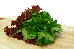 Lettuce and parsley isolated on white background Stock Photo