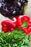 Lettuce and pepper Stock Image