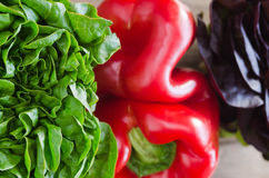 Lettuce and pepper Royalty Free Stock Photo