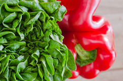 Lettuce and pepper Stock Photo