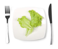 Lettuce on plate Royalty Free Stock Photography
