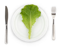 Lettuce on a plate Royalty Free Stock Image