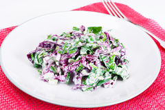 Lettuce, Radicchio and natural low-fat yogurt. Dietary meal Royalty Free Stock Images