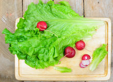 Lettuce and radish. Top view of lettuce and radish on wooden background Stock Photography
