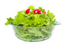 Lettuce and radishes in a bowl. Fresh lettuce and radish in a glass bowl on a white background Stock Images