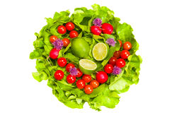 Lettuce, radishes, chives, lime and tomatoes Stock Image