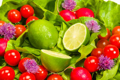 Lettuce, radishes, chives, lime and tomatoes Royalty Free Stock Photography
