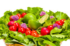 Lettuce, radishes, chives, lime and tomatoes Royalty Free Stock Photos