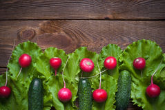 Lettuce and radishes. Lettuce cucumbers and radishes - ingredients for a salad Stock Image