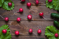 Lettuce and radishes. Ingredients for a salad, a healthy food Stock Photos