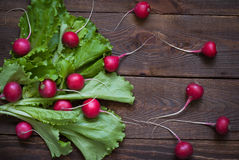 Lettuce and radishes. Ingredients for a salad at the wooden table Royalty Free Stock Images