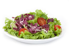 Lettuce and red cabbage salad Stock Photos