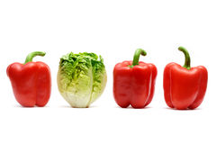 Lettuce and red peppers Stock Photography