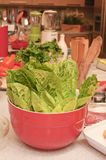 Lettuce. In the red pot on the table on the kitchen Stock Photos