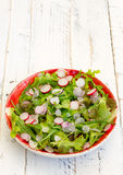 Lettuce Rocket Leaves With Chopped Radishes Salad on Gingham Pla Royalty Free Stock Photos