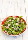 Lettuce Rocket Leaves With Chopped Radishes Salad on Gingham Pla Royalty Free Stock Photos