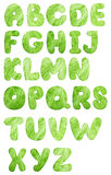 Lettuce salad alphabet Stock Image