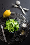 Lettuce Salad and Basic Dressing Ingredients Royalty Free Stock Image