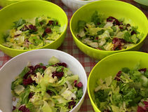 lettuce and salad in the canteen Royalty Free Stock Photography