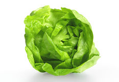 Lettuce salad Stock Photos