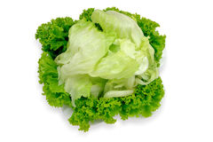 Lettuce salad. Green lettuce salad on a white plate Stock Photo