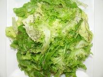 Lettuce salad healthful vitamin diet detail plate lunch Sao Paulo, Brazil stock image