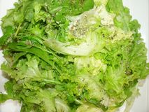 Lettuce salad healthful vitamin diet detail plate lunch Sao Paulo, Brazil royalty free stock images